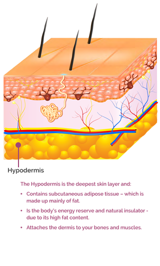 The Hyperdermis skin later text mobile version